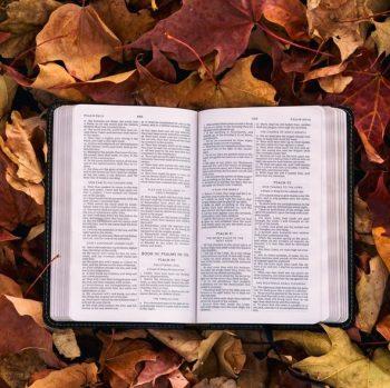 Ist Gott noch eine Frage? Säkularisation als Herausforderung und Chance für die Ökumene