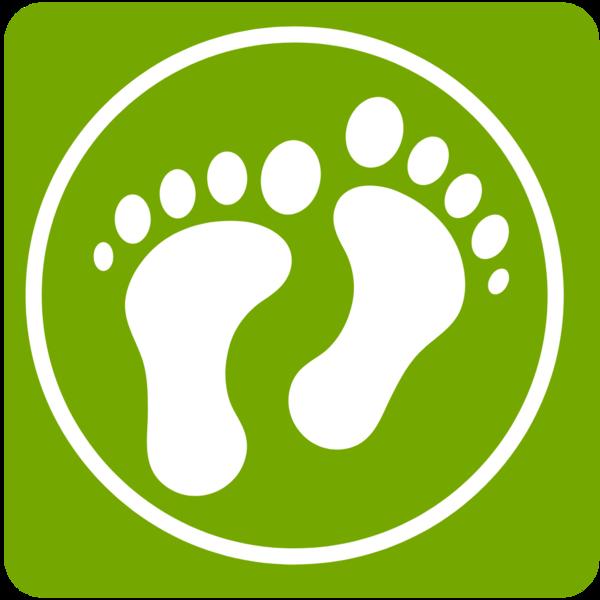 Pilgern vom Sofa aus – neue Pilgerweg-App